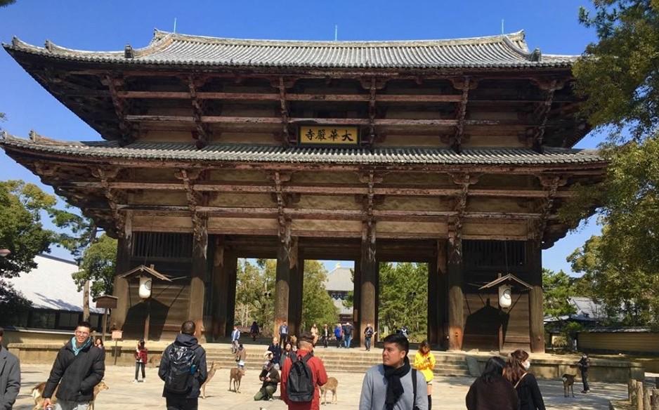 Must visit places Nara Japan