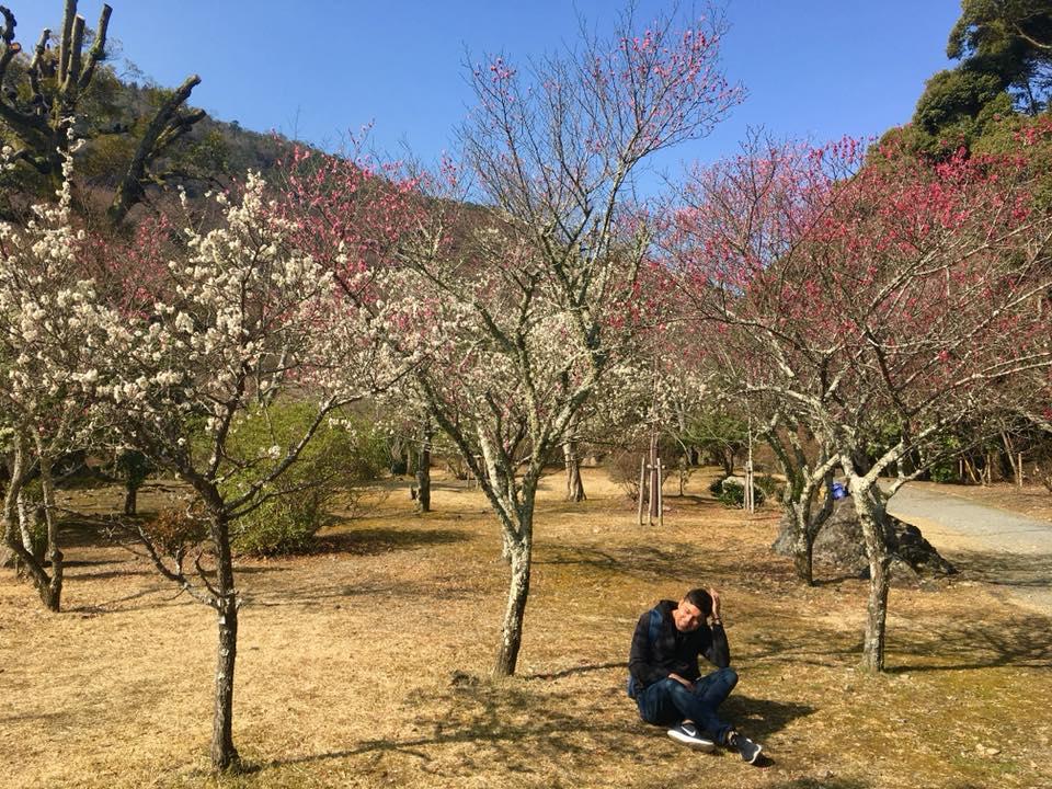 top places to visit Osaka Japan