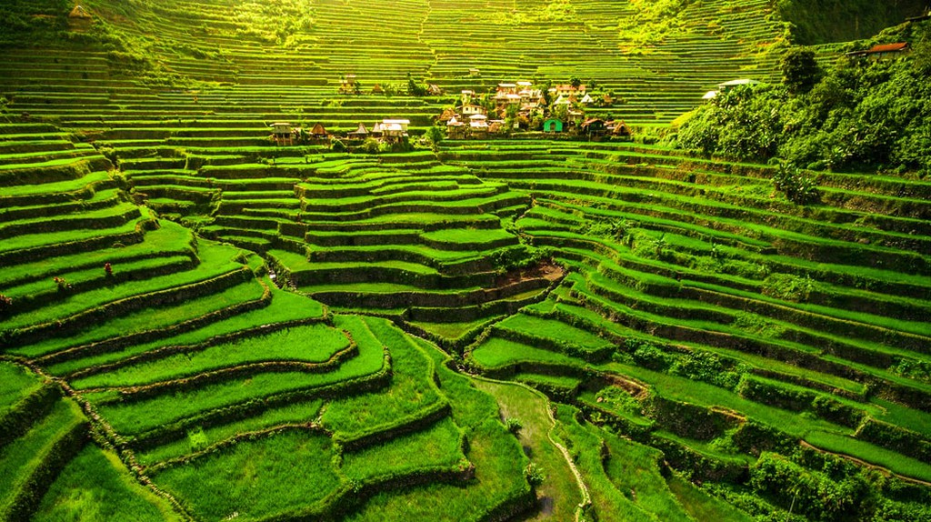 Banaue Rice Terraces Philippines best places to visit in the Philippines