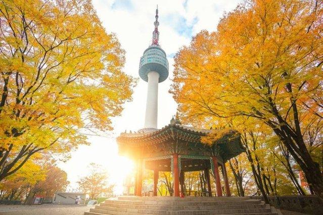 How to Apply for a  South Korea Tourist Visa